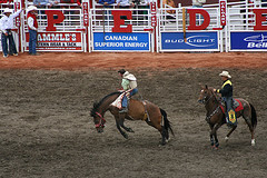 Calgary Stampede photo by john1710 - creative commons