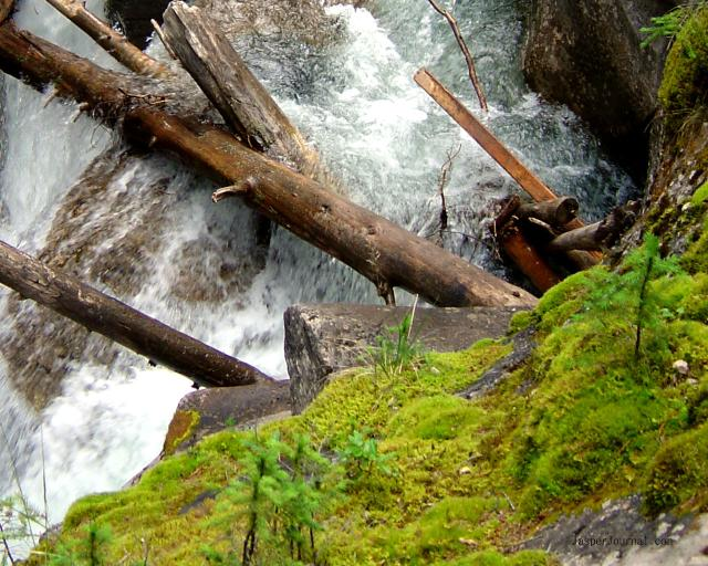 Up-close look at Maligne River Photo