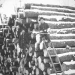 Loggers - Loggers provided the materials to build and heat Canada. - Canadian Rockies