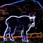 Neon Mountain Goat - Based on a 1940s postcard - Canadian Rockies