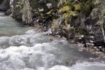 Johnston Canyon water flowing along the edge